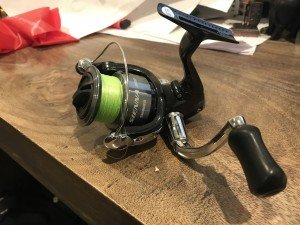 Shimano Sienna review