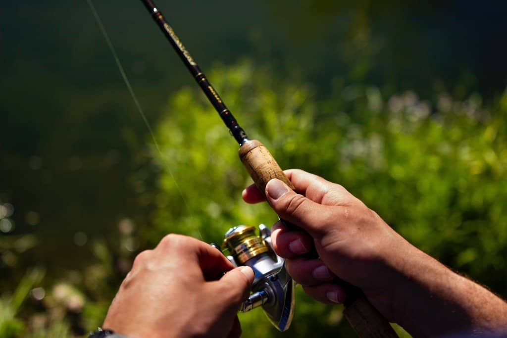best swimbait rods for bass