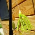 bass spinnerbait picture