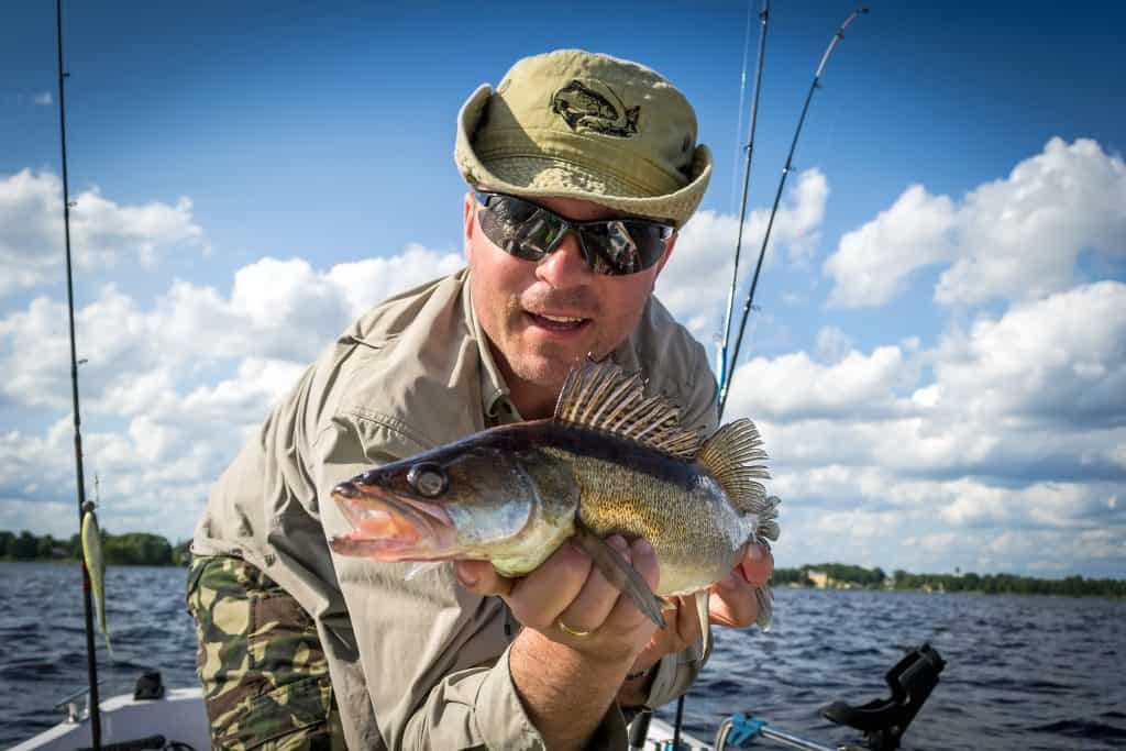 angler with walleye on small boat on sunny day