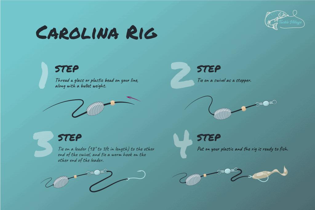 Carolina Rig Set Up Graphic Horizontal