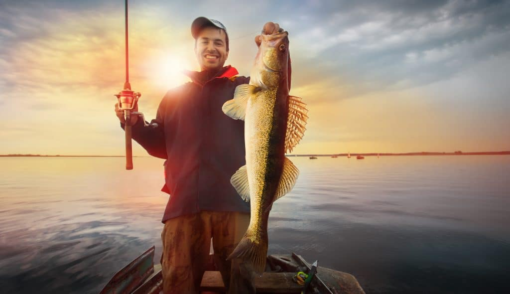 fisherman holding a trophy walleye in a boat with the sun behind him