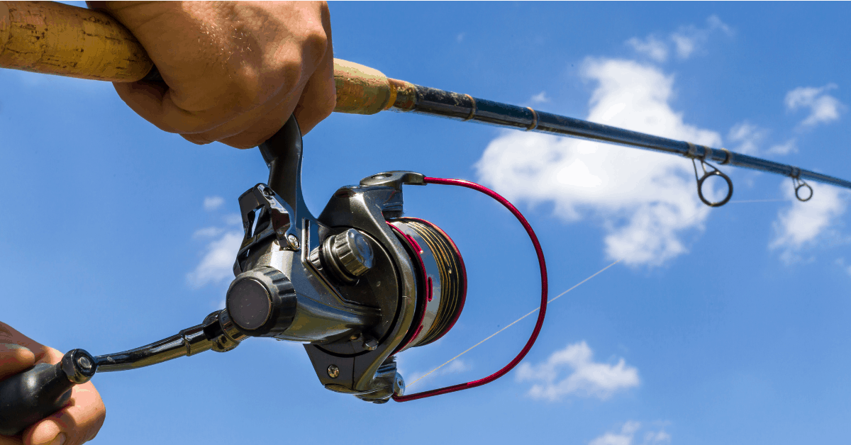 Best Line For Spinning Reel Featured image sunny sky