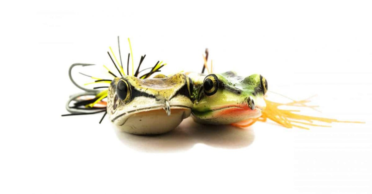 best topwater lures for bass article feature image