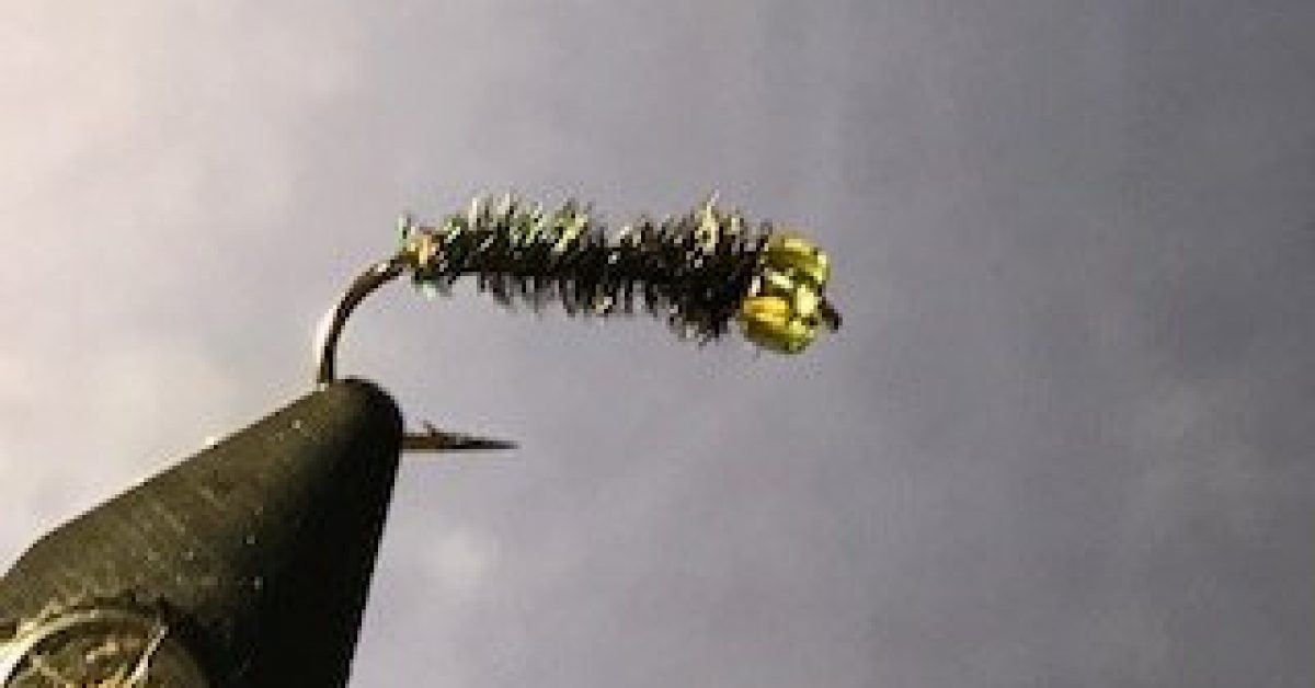 Tying the stick caddis (peacock herl version)
