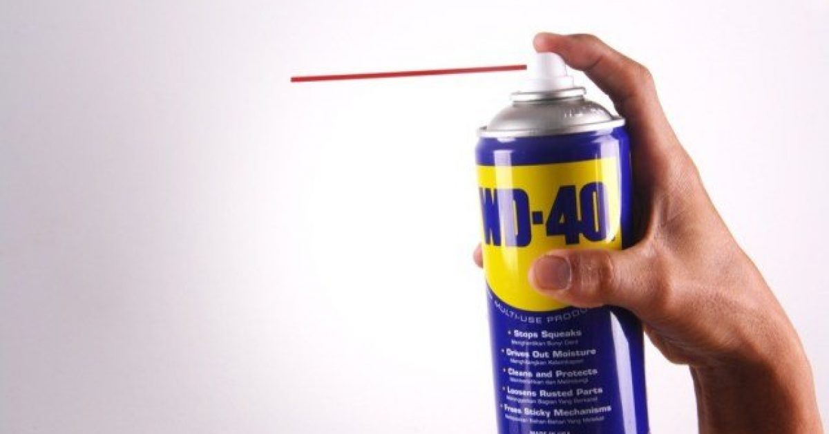 Is WD40 a good fish attractant image